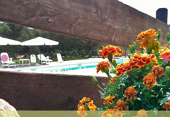 casa-vacanze-piscina-02