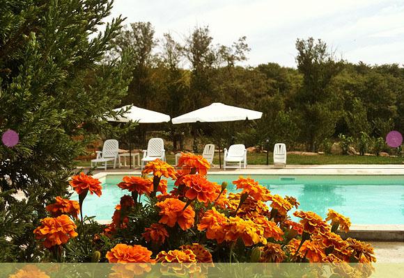 casa-vacanze-piscina-18